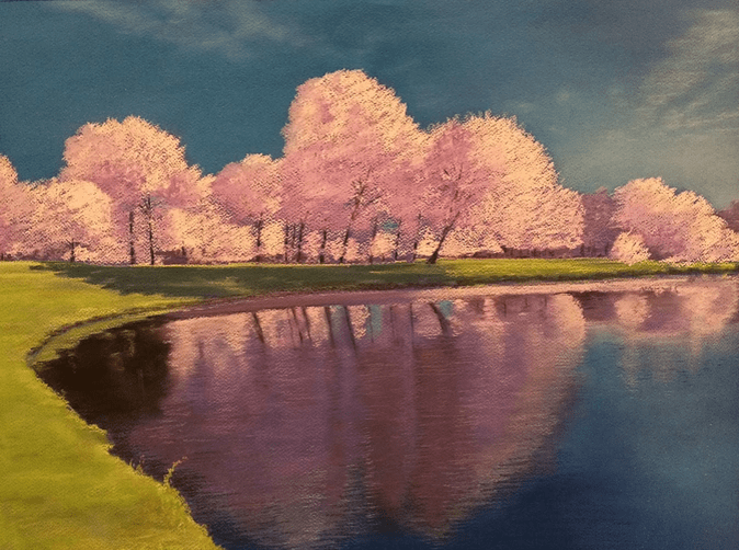 Tina Husted - Art at Argo's, Cherry Blossom Daze